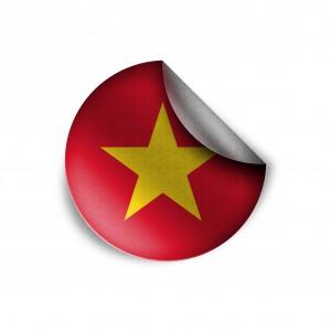 ベトナム個人のID調査